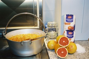 Wren House Seville Orange Marmalade now sold in London
