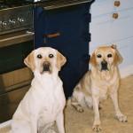 Islay & Gigha Feb 09