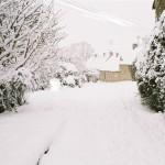 Back Lane in Snow
