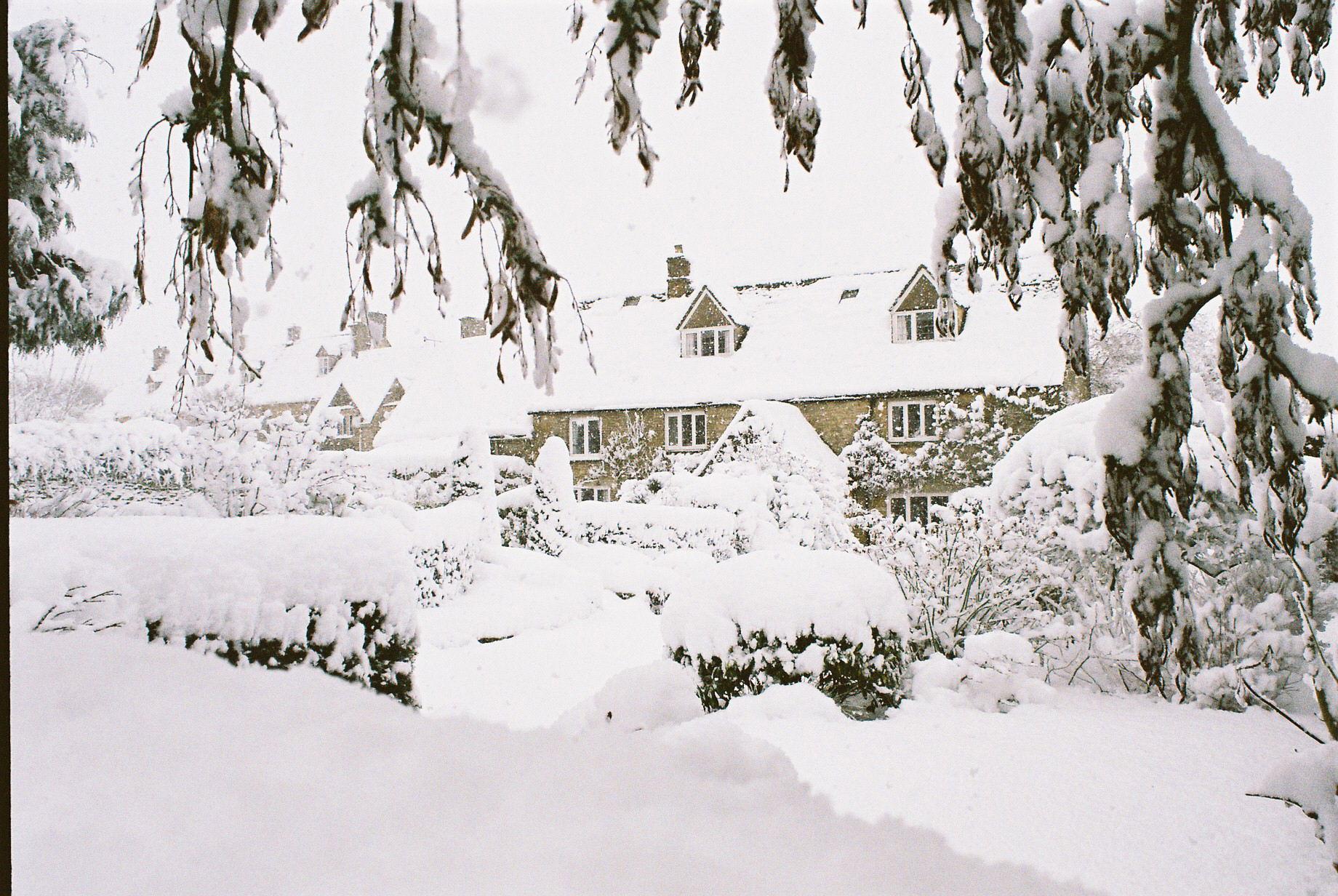 Winter Scenes Gallery | Wren House